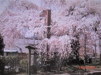 三重県大紀町.jpg