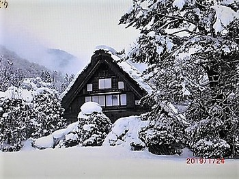 雪に埋まる.jpg